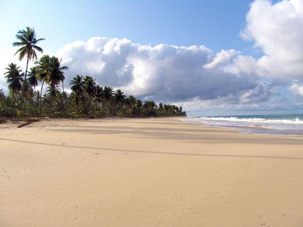 En playas desiertas...